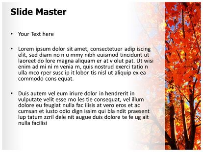 Autum Fall Free PPT Template Slide2