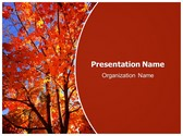 Free Autum Fall PowerPoint Template Background, FreeTemplatesTheme
