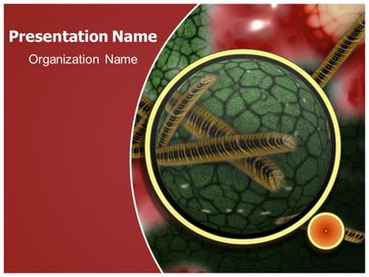 Bacterial Infection Free PPT Template Design, freetemplatestheme.com