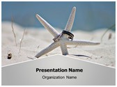 Free Beach Starfish PowerPoint Template Background, FreeTemplatesTheme