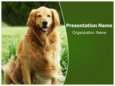 Free Best Friend Dog PowerPoint Template Background, FreeTemplatesTheme
