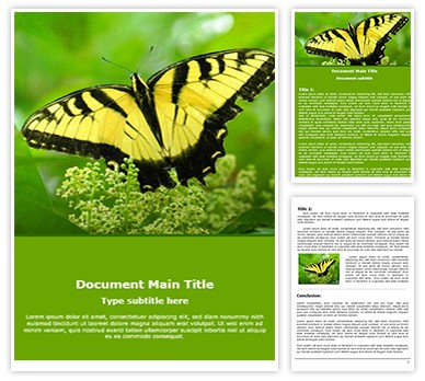 Butterfly Free Word Template freetemplatestheme.com