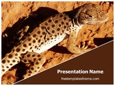 Free Common Iguanas Lizard PowerPoint Template Background, FreeTemplatesTheme
