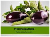 Free Eggplant Vegetable PowerPoint Template Background, FreeTemplatesTheme