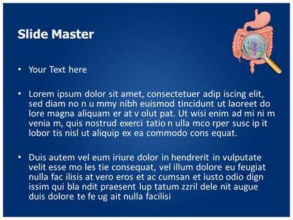 Free gastrointestinal organ anatomy powerpoint template slide1g slide2g toneelgroepblik Choice Image