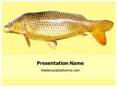 Free Goldfish PowerPoint Template Background, FreeTemplatesTheme