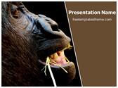 Free Gorilla Monkey PowerPoint Template Background, FreeTemplatesTheme