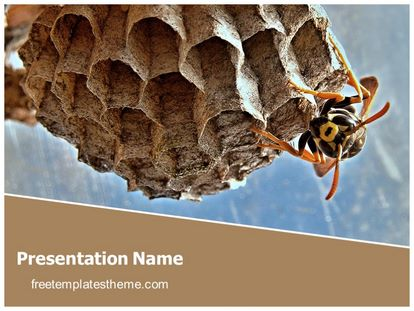 Free Honey Bee Hive Powerpoint Template Freetemplatestheme