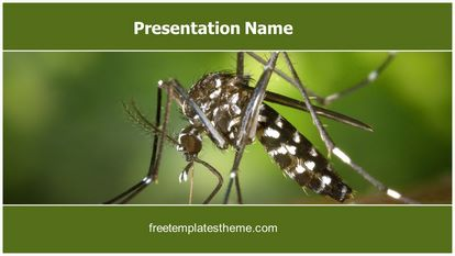 Malaria Mosquito Free Powerpoint Template Widescreen, FreeTemplatesTheme