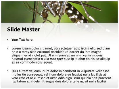 Free malaria mosquito powerpoint template freetemplatestheme slide1g slide2g toneelgroepblik Choice Image
