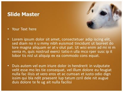 Pet Dog Free Powerpoint Background Slide2