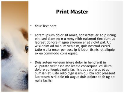 Pet Dog Free Powerpoint Background Slide3