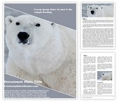 Free Polar Bear Word Template Background, FreeTemplatesTheme