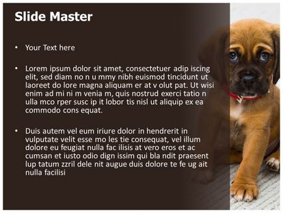 Puppy Dog Free Powerpoint Template Slide2