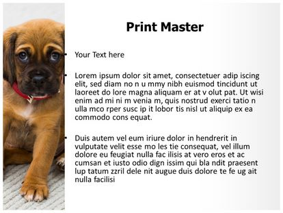 Puppy Dog Free Powerpoint Template Slide3