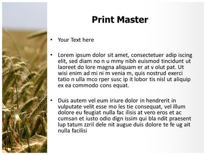 Ripe Wheat Field Free PPT Template Design Slide3
