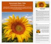 Free Sunflower Field Word Template Background, FreeTemplatesTheme