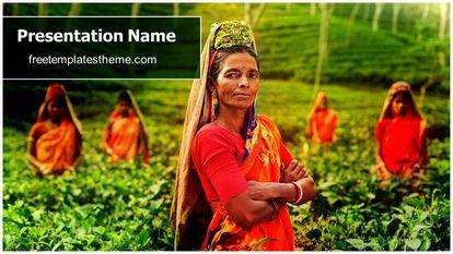 Tea Farmer Free Powerpoint Template Design Widescreen FreeTemplatesTheme