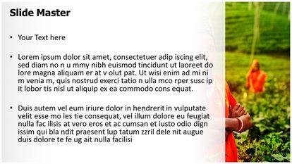 Tea Farmer Free Powerpoint Template Design Widescreen Slide2