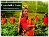 Free Tea Farmer PowerPoint Template Background, FreeTemplatesTheme