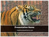 Free Tiger PowerPoint Template Background, FreeTemplatesTheme