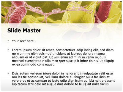 Free tissue bacteria powerpoint template freetemplatestheme slide1g slide2g toneelgroepblik Images