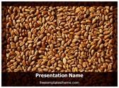 Free Wheat PowerPoint Template Background, FreeTemplatesTheme